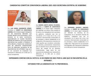 ELECCIONES COMITE DE CONVIVENCIA LABORAL 2021-2023